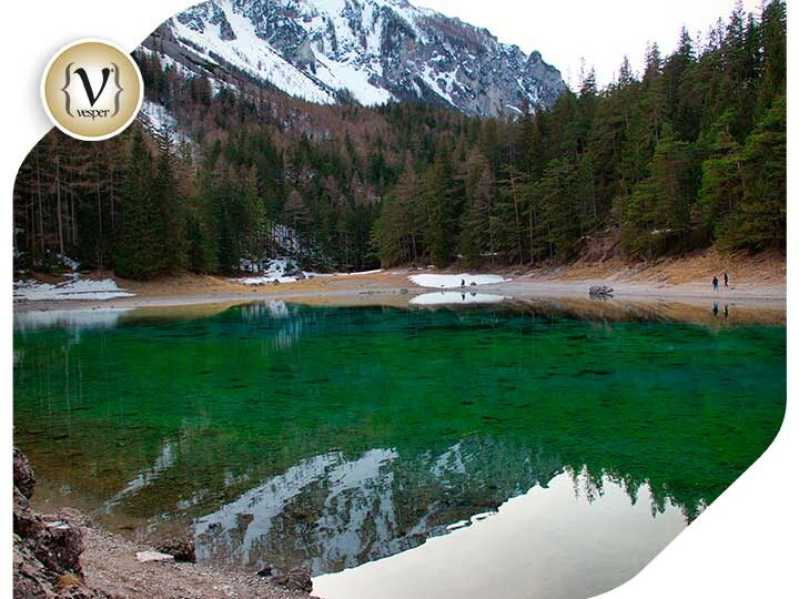 Internet's Best : Why are there flowers at the bottom of Grünersee lake